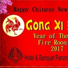 Chinese New Year 2017 (2588)